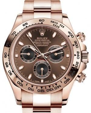 Rolex Cosmograph Daytona 40mm Chocolate Dial Everose Gold Bezel Oyster Bracelet 116505 - BRAND NEW